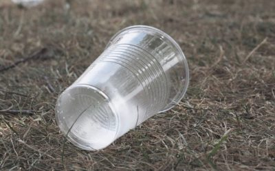 Trinquons responsable ! Zoom sur les gobelets réutilisables et consignés